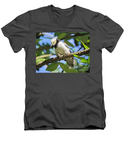 A Starling To Remember Men's V-Neck T-Shirt