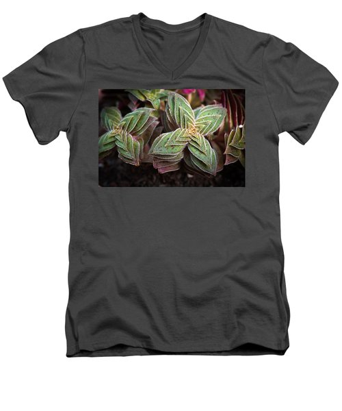 Men's V-Neck T-Shirt featuring the photograph A Succulent Plant by Catherine Lau
