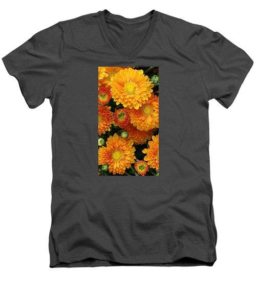 A Touch Of Autumn Men's V-Neck T-Shirt