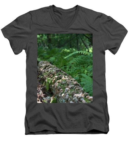 A Touch Of Sun Men's V-Neck T-Shirt