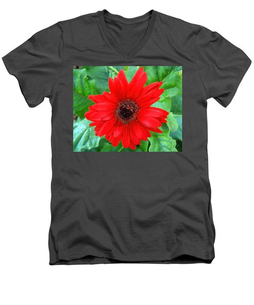 Men's V-Neck T-Shirt featuring the photograph A True Red by Sandi OReilly