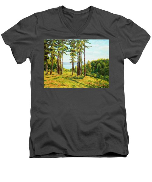 A View To The Lake Men's V-Neck T-Shirt