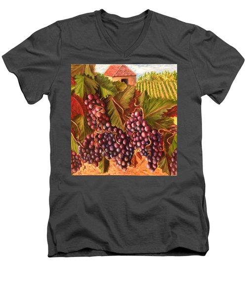 A Vineyard  Men's V-Neck T-Shirt