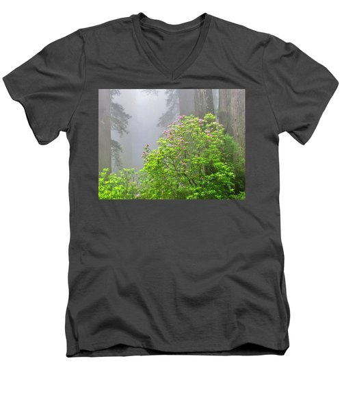 A Walk Alone Men's V-Neck T-Shirt