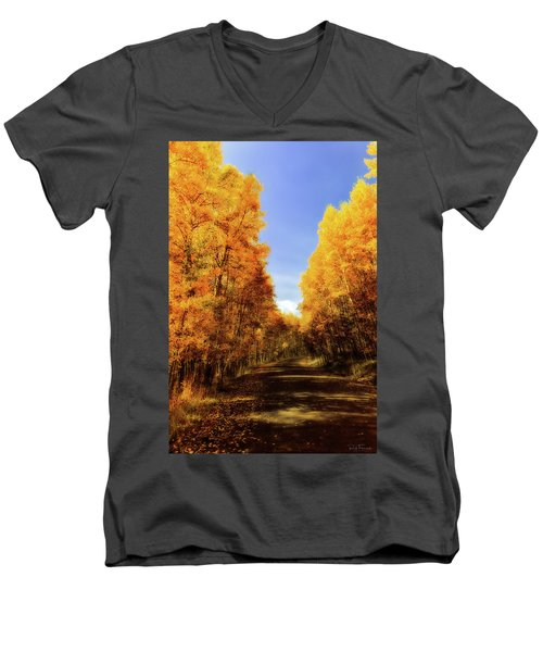 A Walk Down Memory Lane Men's V-Neck T-Shirt by Rick Furmanek