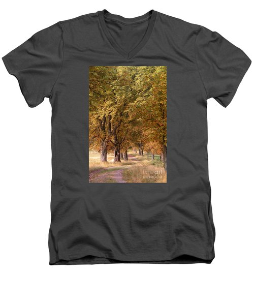 A Walk In The Countryside Men's V-Neck T-Shirt