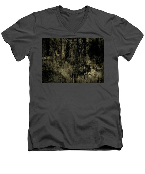 A Walk In The Park Men's V-Neck T-Shirt by Jim Vance
