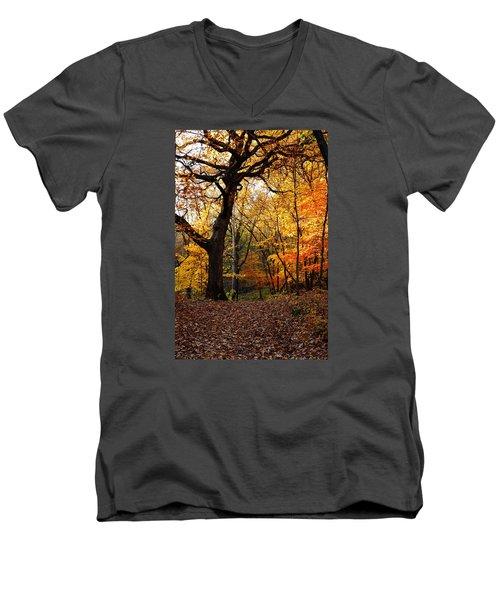 A Walk In The Woods 2 Men's V-Neck T-Shirt by Steven Clipperton