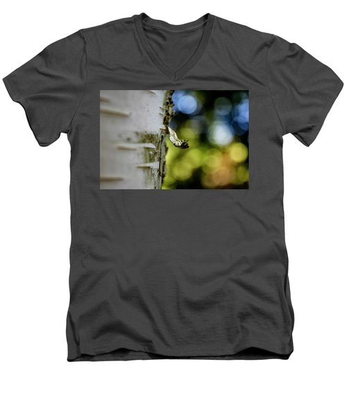 A Walk In The Woods Is Good For The Soul Men's V-Neck T-Shirt