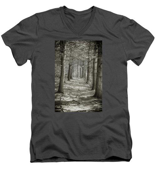 A Walk In Walden Woods Men's V-Neck T-Shirt by Ike Krieger