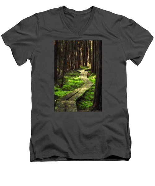 Men's V-Neck T-Shirt featuring the photograph A Walk Through The Bog by Robert Clifford