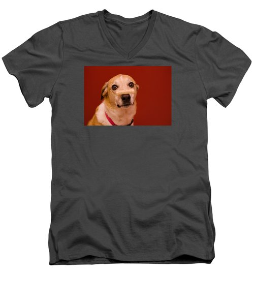 Abbie And A Bone Men's V-Neck T-Shirt