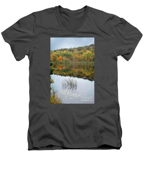 Acadia Autumn Men's V-Neck T-Shirt
