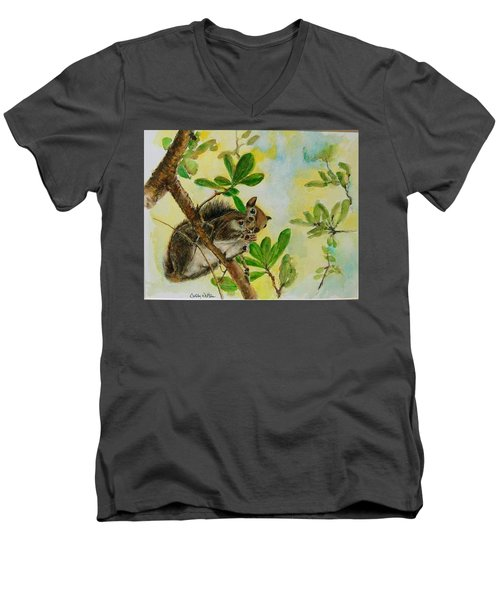 Acorn Lunch Men's V-Neck T-Shirt