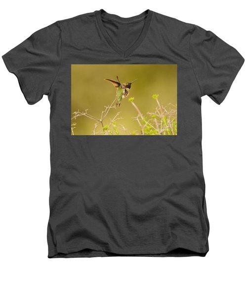 Acrobat Men's V-Neck T-Shirt