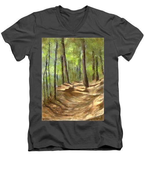 Adirondack Hiking Trails Men's V-Neck T-Shirt