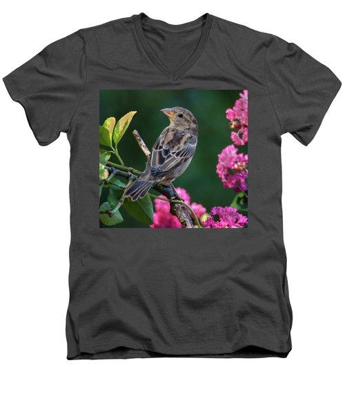 Adorable House Finch Men's V-Neck T-Shirt
