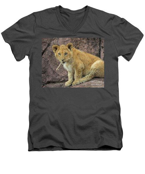 Adorable Lion Cub Men's V-Neck T-Shirt