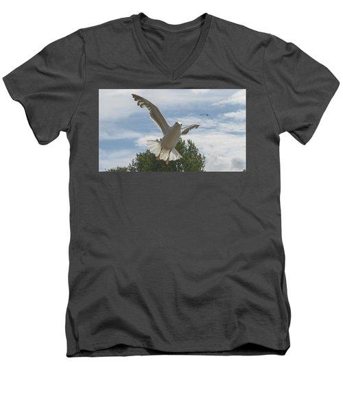 Adult Seagull In Flight Men's V-Neck T-Shirt