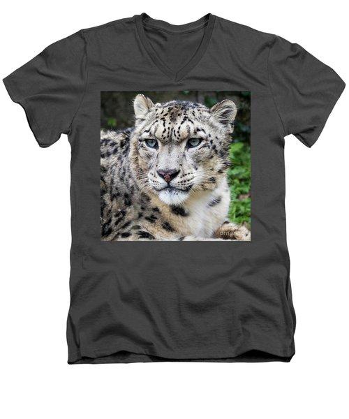 Adult Snow Leopard Portrait Men's V-Neck T-Shirt