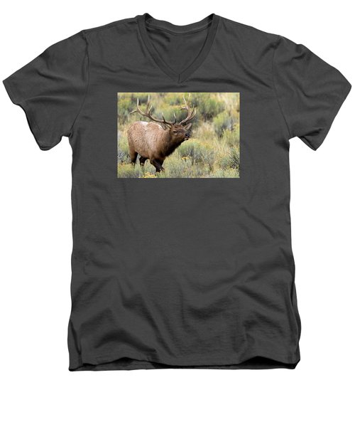 Adventure Men's V-Neck T-Shirt