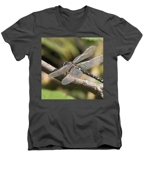 Aeshna Juncea - Common Hawker Taken At Men's V-Neck T-Shirt