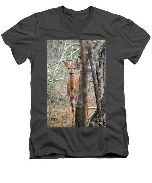 Africa Safari Bushbuck 2 Men's V-Neck T-Shirt