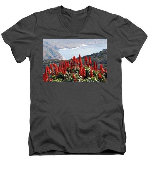 African Aloe And False Bay Men's V-Neck T-Shirt