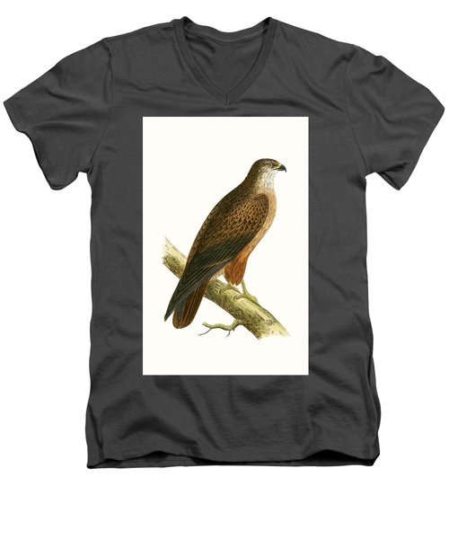 African Buzzard Men's V-Neck T-Shirt by English School