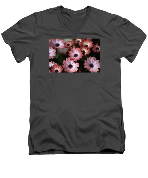 African Daisy Zion Red Men's V-Neck T-Shirt by Joy Watson