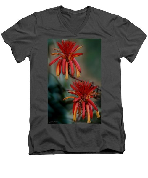 African Fire Lily Men's V-Neck T-Shirt