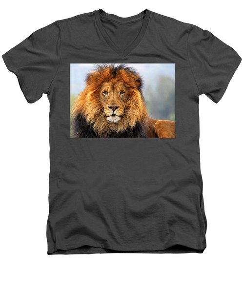 African Lion 1 Men's V-Neck T-Shirt by Ellen Henneke