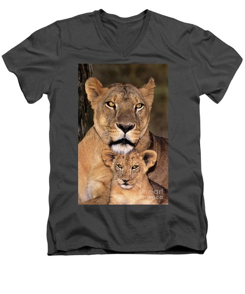 Men's V-Neck T-Shirt featuring the photograph African Lions Parenthood Wildlife Rescue by Dave Welling