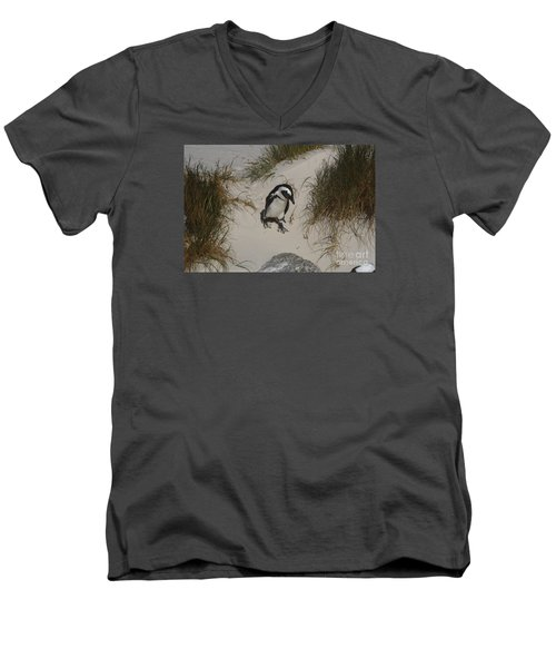 African Penguin On A Mission Men's V-Neck T-Shirt