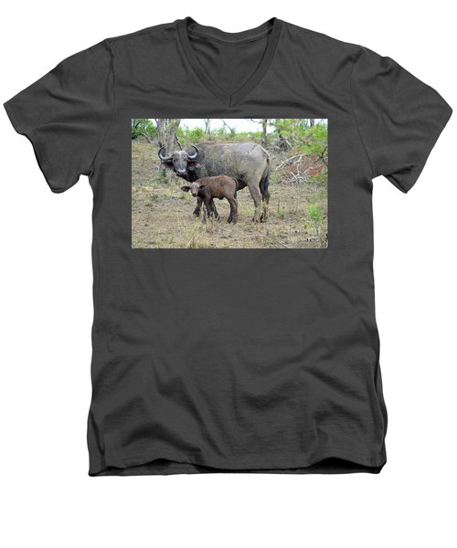 African Safari Mother And Baby Buffalo Men's V-Neck T-Shirt by Eva Kaufman
