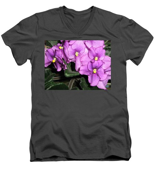 African Violets Men's V-Neck T-Shirt by Barbara Yearty