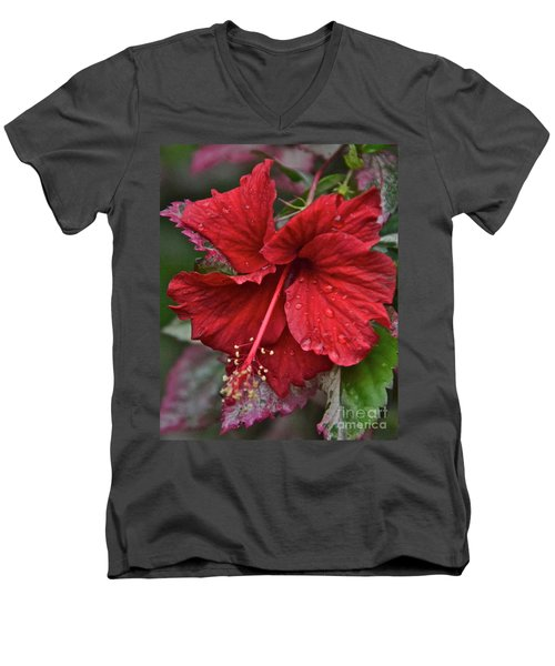 After The Rain Men's V-Neck T-Shirt by Carol  Bradley