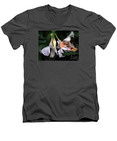 After The Rain - Flower Photography Men's V-Neck T-Shirt by Miriam Danar