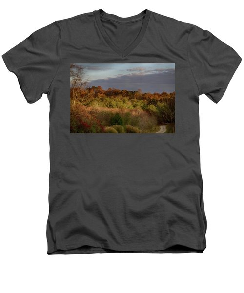 Men's V-Neck T-Shirt featuring the photograph Afternoon Glow In Hocking Hills by Haren Images- Kriss Haren