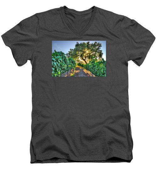 Afternoon In The Vineyard Men's V-Neck T-Shirt by Derek Dean