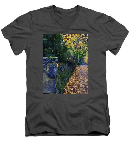 Afternoon Sidewalk  Men's V-Neck T-Shirt