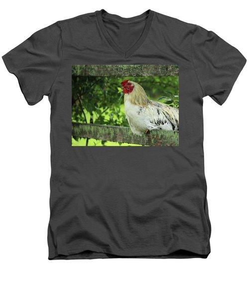 Afternoon Siesta Men's V-Neck T-Shirt by Rowana Ray