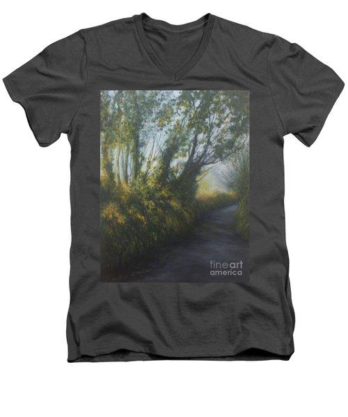 Afternoon Walk Men's V-Neck T-Shirt