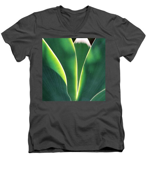 Agave Men's V-Neck T-Shirt