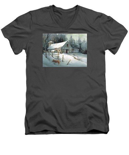 Ageless Beauty Men's V-Neck T-Shirt