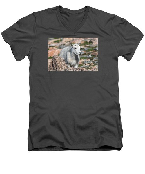 Men's V-Neck T-Shirt featuring the photograph Ahhh Da Baby by Stephen  Johnson
