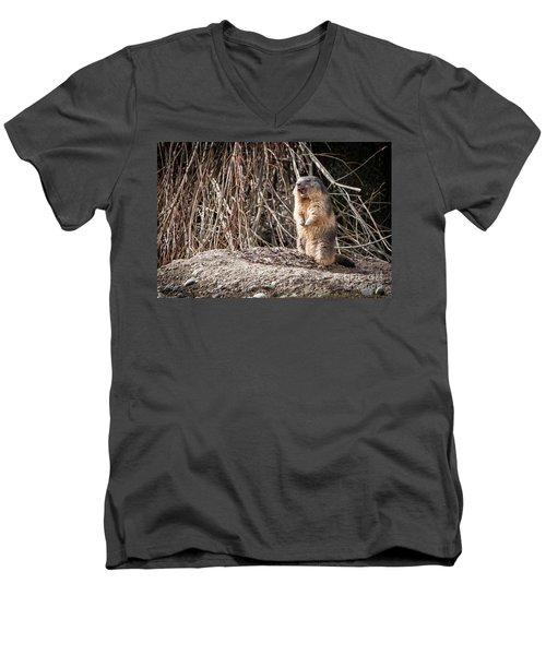 Men's V-Neck T-Shirt featuring the photograph Alan,alan, Alan, Alan by John Wadleigh