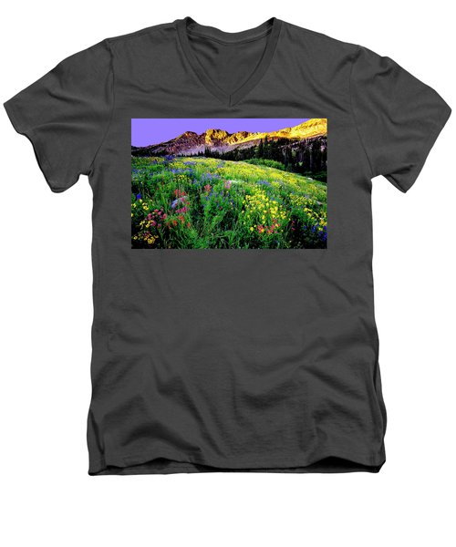 Albion Meadows Men's V-Neck T-Shirt