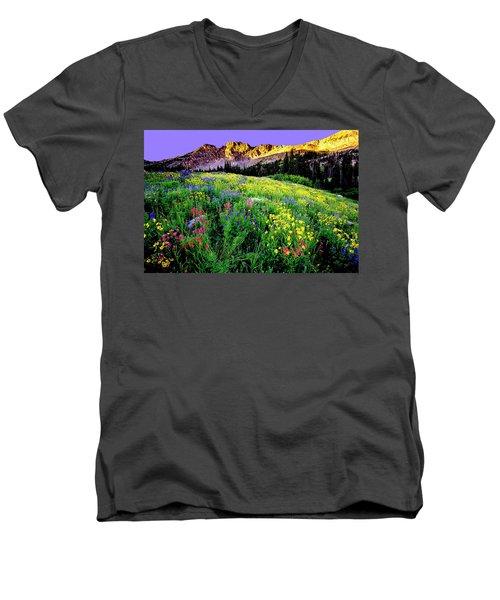 Albion Meadows Men's V-Neck T-Shirt