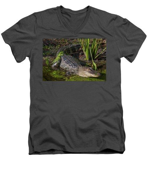Men's V-Neck T-Shirt featuring the photograph Algae Gator by Arthur Dodd